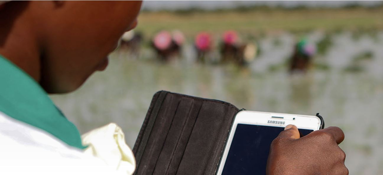 New technology and business skills create rural jobs